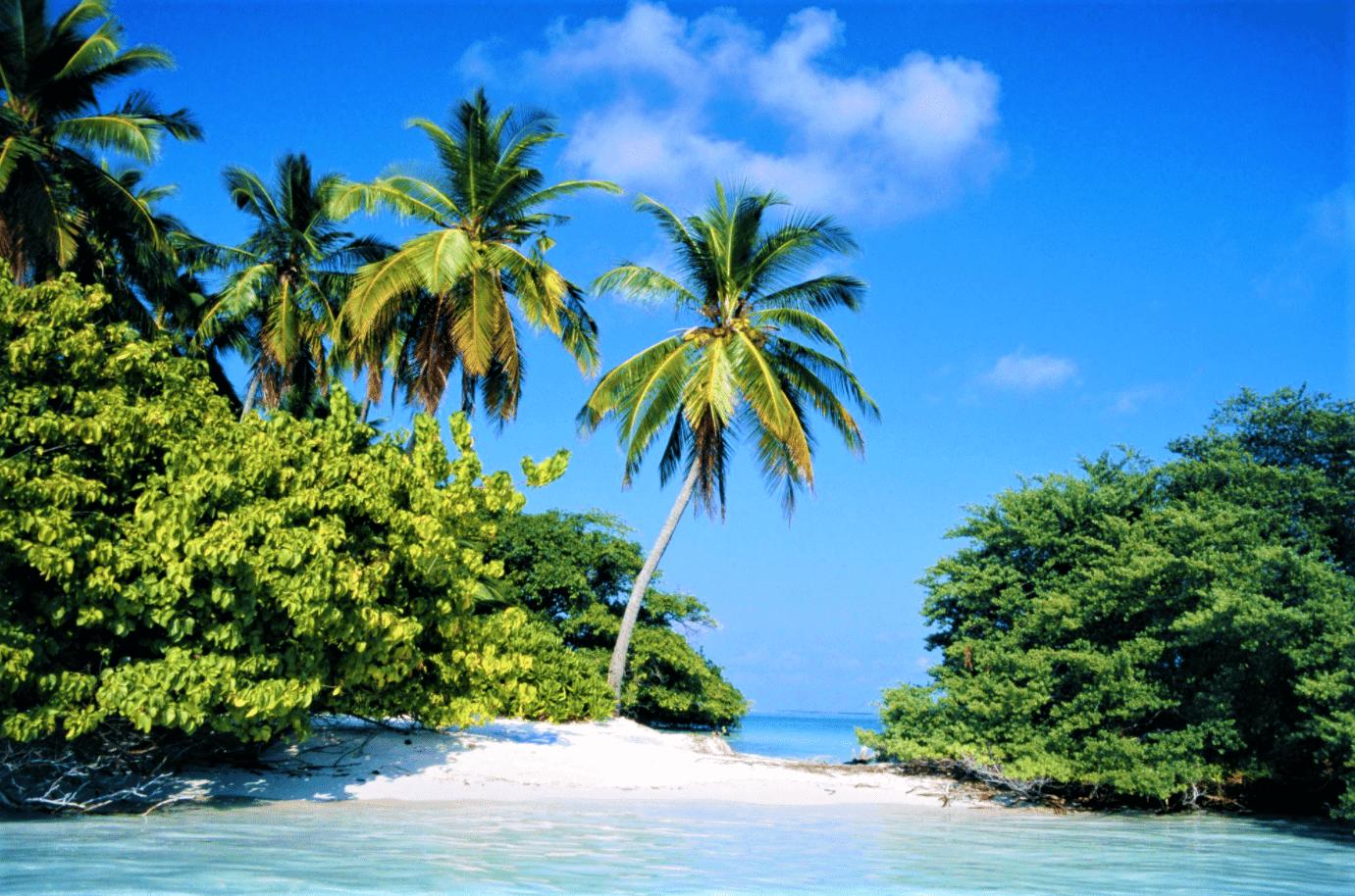 Hut-Bay-island-2-min.png