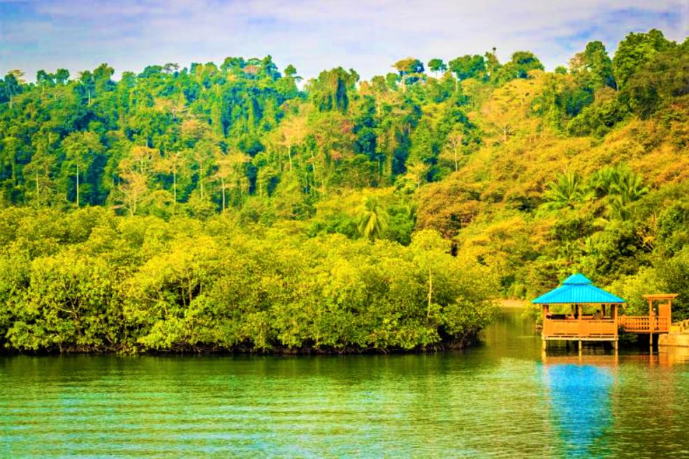 Baratang-island-1.png
