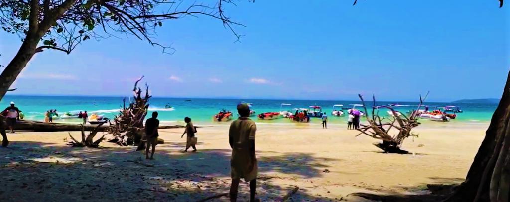 Elephant-Beach-1024x407.png