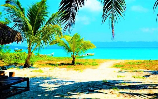 Best Beaches You Must Visit In Havelock Island To Fall In Love With The Ocean!
