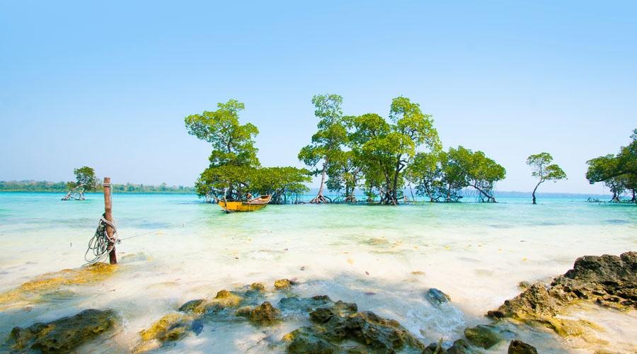 Andaman Short Trip for 2 Nights & 3 Days