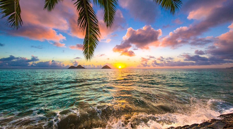 Tropical Vibes Tour Package for 4 Nights & 5 Days
