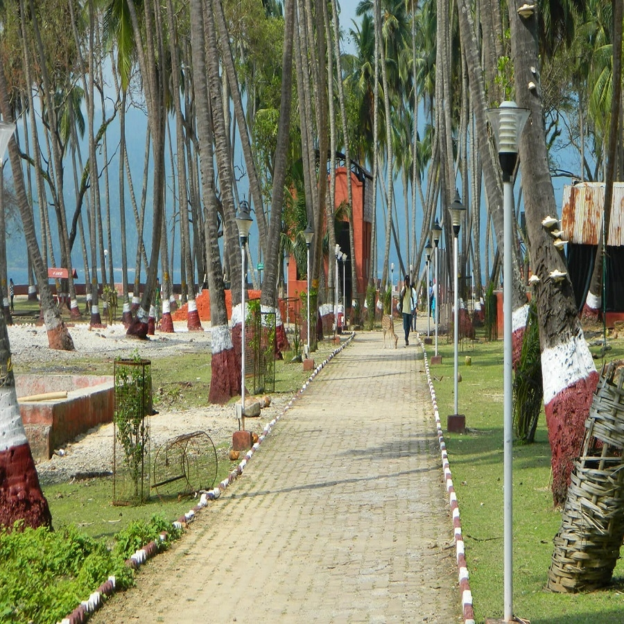 Andaman Best Seller Tour Package for 6 Nights & 7 Days